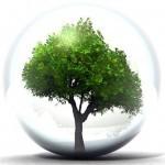 riciclo rigenerazione