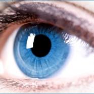 La Tecnologia a getto d'inchiostro utilizzata per stampare cellule dell'occhio
