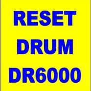 Come effettuare il reset del drum brother DR6000